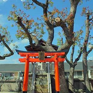 貴布禰神社 (兵庫 尼崎市) 其の弐