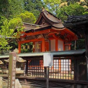 日根神社 (大阪 泉佐野市) 其の弐