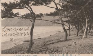 「千々石海岸」「小浜海岸」の昔の姿~古絵葉書より