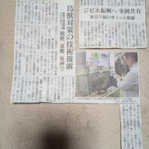 11月21日の新聞記事