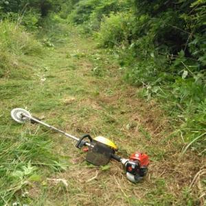 箱檻周辺の草刈り