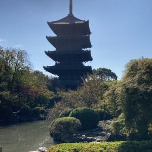 GO TO TRAVEL で京都へ