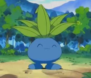 オーキド「こいつは謎の草だからナゾノクサ!不思議な草だからフシギソウ!w」