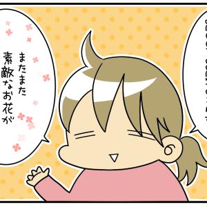【PR】自宅に彩りを☆気軽に試せるお花の定期便サービス