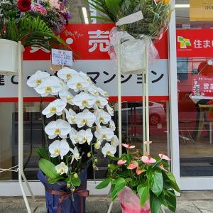 【祝開店】お世話になっている不動産業者さまにお花をお贈りしました