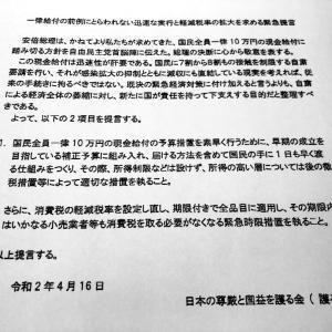 「日本の尊厳と国益を護る会」(護る会)による提言