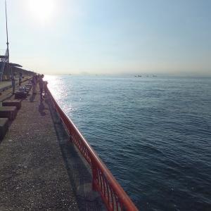 神戸平磯海釣り公園で釣りをするのだ。   神戸市垂水区