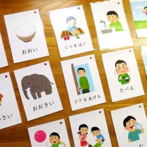 増してくる、絵カードの必要性 (療育日記:3歳6か月)