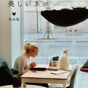 小林希『世界の美しい街の美しいネコ 完全版』:ネコは街の片隅を歩き、街並みに色を添える