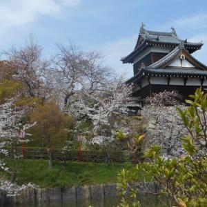 さくら百選のお城は続・名城百選でした