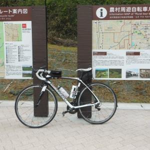 京奈和自転車道を右往左往