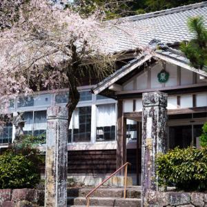 旧粟代小学校 ~廃校の桜~