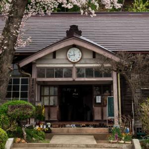 旧上岡小学校 ~廃校の桜~