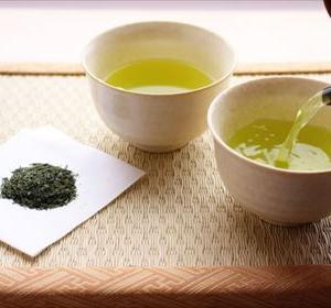 お茶がダイエットに効果的という根拠
