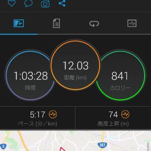 20キロペース走 先週の振り返り