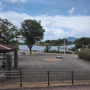 かなり密な江津湖水遊びを眺めながらの江津湖ラン