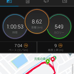 ゆっくり走のみですが月間300キロ超えました