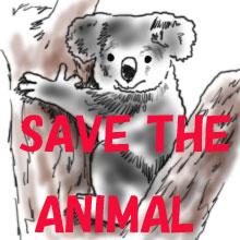 10億匹の動物死亡 オーストラリア火災