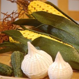 生徒さんの作った野菜とテヨンが育てた野菜