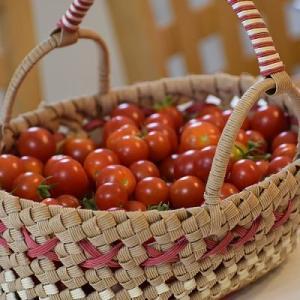 真っ赤なトマトと鯛の塩釜焼き