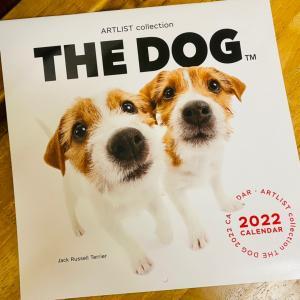 THE DOG 2022年カレンダー発売!