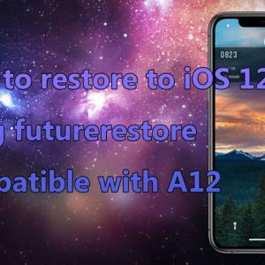 futurerestoreを使ってiOS 12.4に復元する方法 [A12対応]