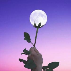 満月〜月と女性の関係〜