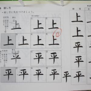 公文書写 筆ペン D 21a ~ D 50b