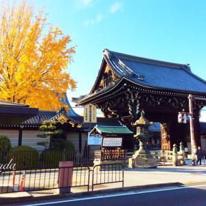 R-panda2019年最後の一時帰国(2019.12.10)京都神社・紅葉巡り