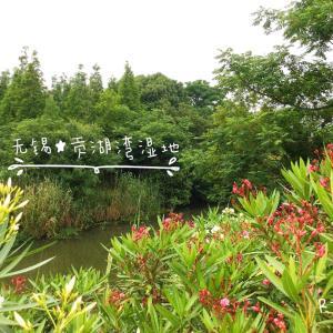 中国★無錫 公園散歩❸【贡湖湾湿地】(2020.05.31)