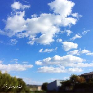 日本★大阪|今日の癒しの空+父の空回りハリキリ!(2020.10.26)