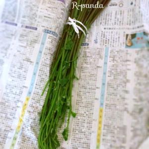 日本★大阪|父の故郷から届いた山菜と珍しい日本酒【喜楽里】♪(2021.06.02)