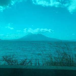 こんな時ですが、実は鹿児島に行ってきました。最終日