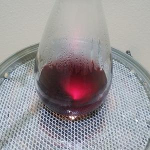 錬金術師みたいな赤ワインのアルコール分析