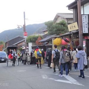 【大人のお出かけ】京都・サクッと嵐山散策