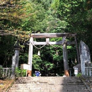 【大人のおでかけ】神々が宿る長野・戸隠神社へ 前編