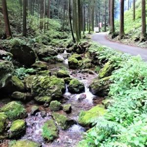 【大人のおでかけ】涼を求めて黒山三滝へ