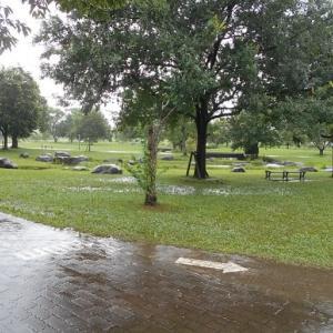 100年に一度の大雨が多すぎる