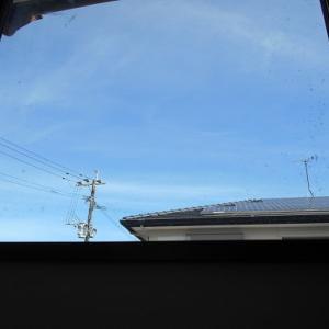 風の谷の風車の里に向日葵を見に行った話
