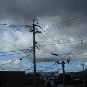 台風一過の後片付け