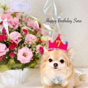 Happy Birthday☆さぁーちゃん♪