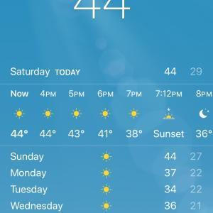44度とは