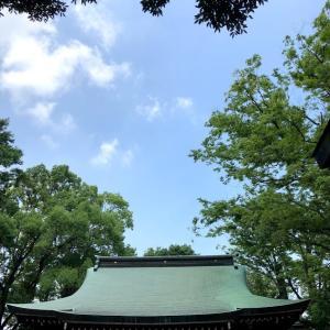 神社参りへ