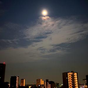 夏空を照らす8月の満月「スタージェンムーン」