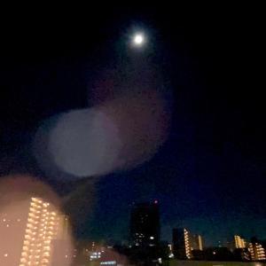 今夜は「中秋の名月」に出会えるのでしょうか?