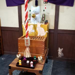 尾曲がり猫神社