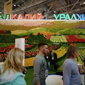 ロシア・ベラルーシ肥料産業の残酷物語 カルテル崩壊で起きた値崩れ