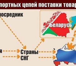 ユーラシア諸国からロシアへ禁輸食品の違法な再輸出続く