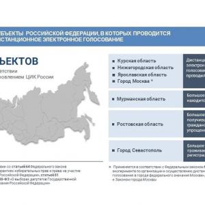 ロシア下院選情勢:リモート電子投票をめぐる動き