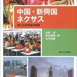 『中国・新興国ネクサス: 新たな世界経済循環』